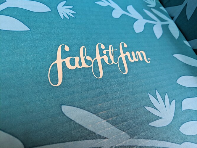 FabFitFun-Summer-2020-Box-Logo
